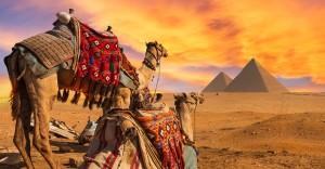 مقومات السیاحة في مصر